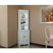 corner cabinet living room corner cabinet for living room home design plan