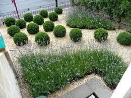 gravel garden design plans gravel garden design ideas gravel
