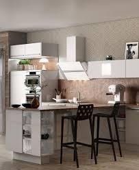 modele de cuisine hygena cuisine équipée meubles rangements électroménager ixina