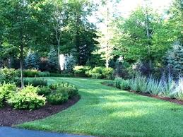 Privacy Backyard Ideas Best Trees For Backyard Privacy Conceptcreative Info