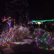 zoo lights houston 2017 dates denver zoo lights 234 photos 67 reviews festivals 2900 e