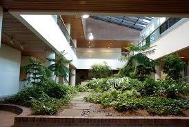 giardini interni casa giardini interni tipi di giardini progettazione giardino
