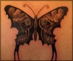 7 best masculine butterflies images on butterflies