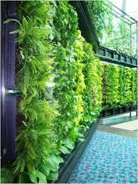 inside urban green green walls