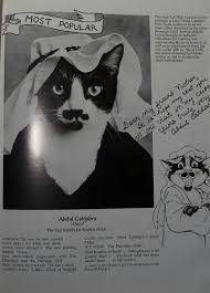 cat high the yearbook a year book for cat cat high give up