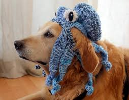 Large Dog Halloween Costume Ideas Funny Dog Hat Octopus Hat Dogs Funny Pet Accessories