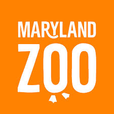 bored at home create your own zoo the maryland zoo in baltimore home facebook