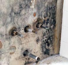 Mold In Bathroom Shower Mold In Bathroom Mold Inspection U0026 Testing