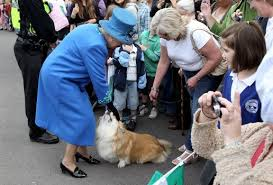 queen elizabeth dog queen elizabeth s last corgi willow has died