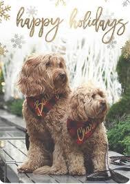 fabdog 2016 card contest winners fabdog