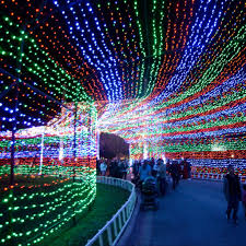 christmas lights best christmas lights in america popsugar smart living