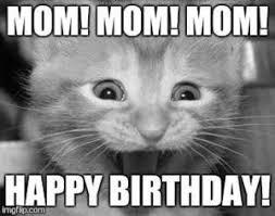 Cute Birthday Meme - cute happy birthday meme download free printable graphics