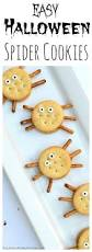 easy spider cookies recipe spider cookies recipes and snacks