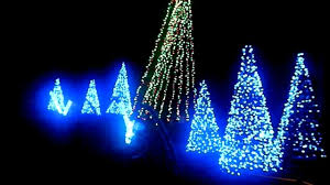 Washington Dc Zoo Lights by National Zoo Lighting Dc Hd Youtube