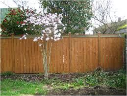 Cheap Backyard Fence Ideas by Backyards Gorgeous Fence In Backyard Backyard Fence Ideas