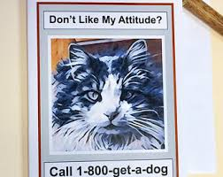 funny cat card etsy