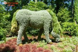 Atlanta Botanical Garden Atlanta Ga Atlanta Botanical Garden Atlanta Ga Home Design Ideas And Pictures