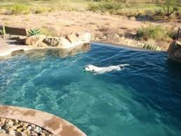 pool cleaning tips pool cleaning tips by malibu pool service and repair