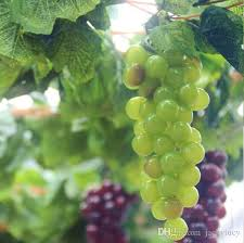 Outdoor Wall Hanging Christmas Decorations by Artificial Big Grapes String With Grape Vine Leaf Set For Home