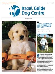 Blind Dog And Friend A Leap Of Faith With A Furry Friend Jewish News