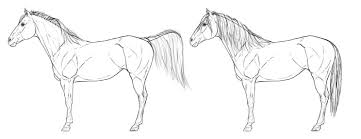 how to draw horses step by step instructions