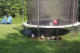 Backyard Chicken Coop Ideas Covert Chicken Coop Modern Homesteading Earth News