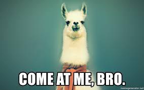 Come At Me Bro Meme Generator - come at me bro pancakes llama meme generator