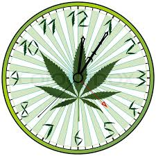 abstract clocks cannabis green clock against white background abstract art