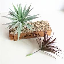 Imitation Plants Home Decoration Artificial Plants Green Purple Succulents Simulation Plants Home
