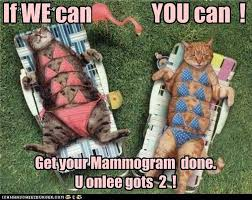 Breast Cancer Memes - hilarious breast cancer awareness memes everyone will love photos