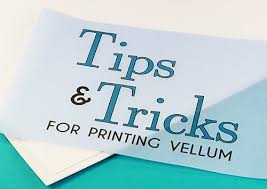 Paper For Invitations 45 Best Translucent Vellum Paper Images On Pinterest Vellum