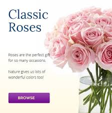 Flower Shops In Salt Lake City Ut - florist in park city utah send flowers u0026 gifts online kremp