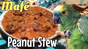 cuisine malienne mafé mafé senegalese peanut stew in wolof and