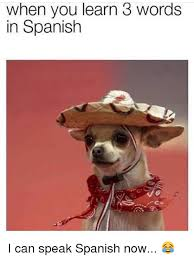 Speak Spanish Meme - when you learn 3 words in spanish i can speak spanish now