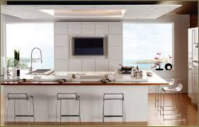 Kitchen Design Miami Appealing Modern Kitchen Cabinets Miami 146 Modern Kitchen Design