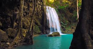 amazing nature pictures amazing nature of thailand rainforest national park waterfall flows