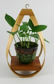 modern hanging planters home