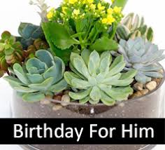 flowers for him birthday flowers flowers for men birthday flowers for him