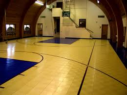 interior foxy backyard basketball courts and home sport court
