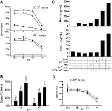 target carlsbad black friday hours enhanced antilymphoma efficacy of cd19 redirected influenza mp1