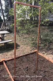 Vegetable Trellis How To Build A Vegetable Trellis Harmony Hills Home And Garden