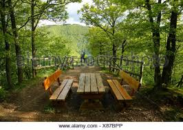 table in the wilderness schleiden germany mountain bikers on the wilderness trail in the