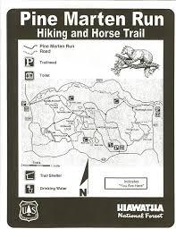 Birch Run Michigan Map by Michigan Trail Maps