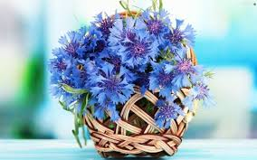 Best Online Flowers The Best Website To Use To Send Flowers Quora
