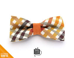 thanksgiving tie pet bow tie field guide autumn plaid fall thanksgiving