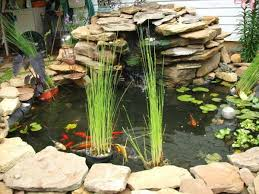 How To Make A Patio Pond 22 Small Garden Or Backyard Aquarium Ideas Will Blow Your Mind
