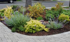 Front Yard Landscaping Ideas No Grass - landscaping ideas no grass front yard no lawn garden 0181jpg750 x