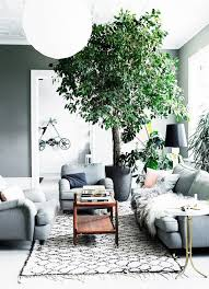 Plants Home Decor Indoor Trees Potted Plants Home Decor