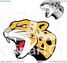 jaguar clipart clipart of roaring angry jaguar or leopard big cat heads royalty