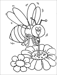bumblebee honey using straw coloring page download
